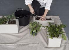 Cinderblock planters DIY by Matthew Williams