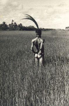 Ney Matogrosso. Série Campos. Arembepe, Bahia. 1974