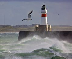 Harbour entrance by Muriel Dyga on 500px