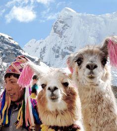 Peru - living little girl bikes-tassels and all!  :D