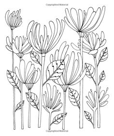 Add Color: Botanicals: 30 Original Illustrations To Color, Customize, and Hang: Lisa Congdon: : Books Colouring Pages, Coloring Books, Flower Line Drawings, Doodles Zentangles, Flower Doodles, Fabric Painting, Copic, Easy Drawings, Doodle Art
