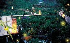 """京王線(新宿始発)の終点、高尾山口駅。新宿からも1本で行けてしまうこの場所にある料亭""""うかい鳥山""""で、夏の風物詩となっている""""ほたる狩り・ほたる観賞の夕べ""""についてご紹介します。"""