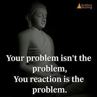 Metta for World Peace. here you are going to learn about buddhism the phislophy of life. Buddhist Quotes, Spiritual Quotes, Wisdom Quotes, Quotes To Live By, Life Quotes, Buddha Quotes Inspirational, Motivational Quotes, Best Buddha Quotes, Buddhist Meditation Techniques