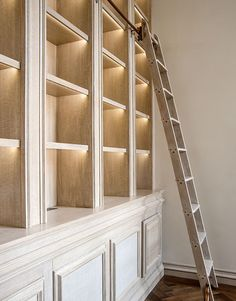Built in bookcases with library ladder. Love the lighting in each cubby.