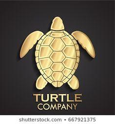 Logo Concept, Logo Branding, Turtle, Car, Pretty, Architectural Presentation, 3d Pictures, Illustrations, Pictures