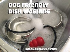 It's no secret that dog stuff gets gross. Keep bowls, Kongs and other pet gear clean with these dog friendly dishwashing tips.