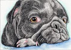 Fur Babies, French Bulldog, Dogs, Animals, Bulldog Frances, Animaux, French Bulldog Shedding, Doggies, Animal