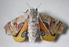 Fabric sculpture Large moth textile art by YumiOkita on Etsy