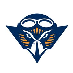 UT Martin Athletics - use as top pattern for my UTM quilt