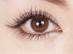 As one of the most professional pretty Mink Eyelashes manufacturers and suppliers, as well as a reliable vendor, we bring here high quality pretty Mink Eyelashes with good price. Natural Looking Eyelash Extensions, Eyelash Extensions Styles, Makeup Pro, Makeup Tools, Eye Makeup, 3d Mink Lashes, False Eyelashes, Asian Makeup Looks