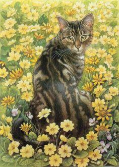 Image Chat, Cat Drawing, Animal Paintings, Beautiful Cats, Belle Photo, Crazy Cats, Cat Art, Pet Portraits, Pet Birds