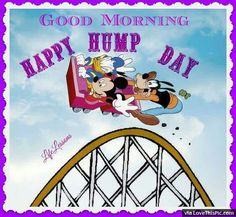 Good Morning Happy Hump Day Disney Quote Wednesday Greetings, Wednesday Hump Day, Morning Greetings Quotes, Wednesday Sayings, Saturday Morning, Hump Day Quotes, Its Friday Quotes, Friday Humor, Friday Drinking Quotes