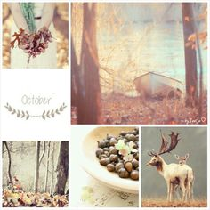 October. #moodboard #mosaic #collage #byJeetje♡