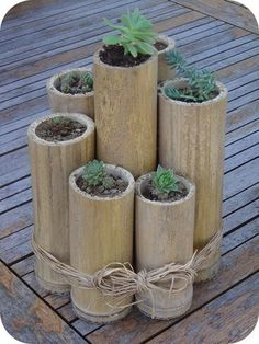 Adorno de bambu con plantas pequeñas