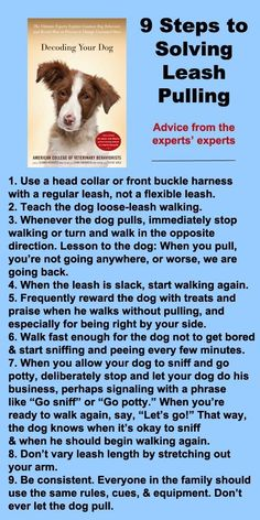 9 steps to solving leash pulling #dogs #pets Check out Dieting Digest -- I used the front buckle harness on Lulu and it works!