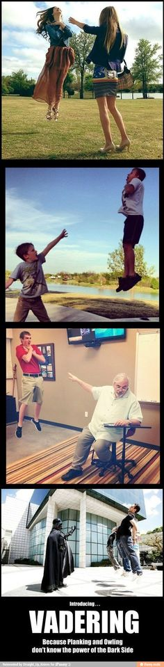 Vadering instead of planking or coning or whatever owling is... I love that this is a thing.