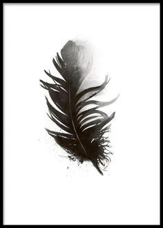 Print / poster med svart fjäder i akvarell. Snygg tavla med svart fjäder. Svartvita tavlor online. www.desenio.se