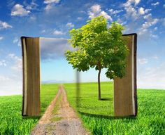 """""""Whenever you read a good book, somewhere in the world a door opens to allow in more light"""" — Vera Nazarian"""