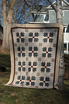 Bear paw quilt in blue and brown. Classic!!!