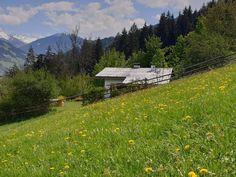 Berghütte mieten | 331 Berghütten in Österreich | Hüttenurlaub Mountains, Nature, Travel, Naturaleza, Viajes, Destinations, Traveling, Trips, Nature Illustration