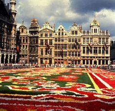 Bélgica- Bruselas ( Grand Place )