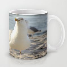 herring gull Mug by Tanja Riedel - $15.00