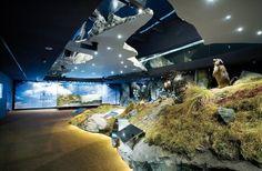 Natinalparkwelten Mittersill  | © Nationalparkwelten Zell Am See, Happy Kitchen, Museum, Tour Guide, Winter Holidays, Austria, Aquarium, Europe, Tours