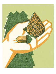 Nuts in the hand Art Print at AllPosters.com