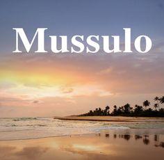 Apresentado o desenvolvimento da proposta de requalificação do Mussulo https://angorussia.com/lifestyle/turismo/apresentado-desenvolvimento-da-proposta-requalificacao-do-mussulo/