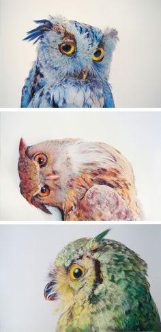 Owl drawings by John Pusateri