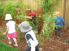 plantings in the play space