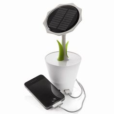 (Not sold at Mr Mobile). XDModo Solar Sunflower is a solar charger that collects sun's energy through the solar panel and uses it to generate energy to charge your mobile phones.