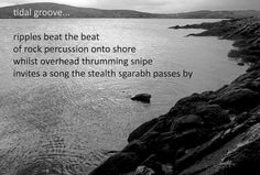 tidal groove...