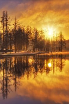 sundxwn: First frost… by Mike Stuckey