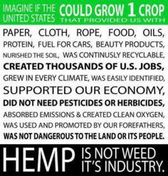 SOLUTION to world problems = HEMP #freeyourmind