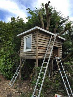 I've build my boys a little treehouse!