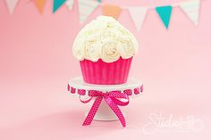 Learn how to make the perfect cake for your baby's cake smash photo session.  Baby's First Birthday: Make a Smash Cake « Champaign Photographer Studio H2O Photography  #studioh2o #studioh2ophoto #cakesmash