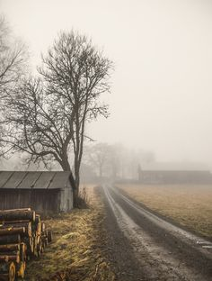 Foggy country road (Sweden) by Magnus Dovlind cr.c.