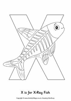 X is for xray fish colouring page