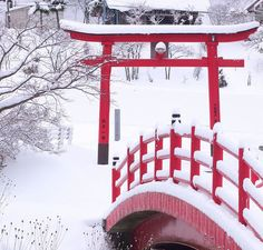 Torii gate in winter. Japan. (黒ネコ)  I want to make a small Japanese red bridge and gate like this in my landscaping and garden.