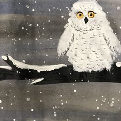 Kindergarten snowy owls, winter art, elementary art, kindergarten art, kindergarten winter art, #elementaryart #kindergartenart #kindergarten #winter #winterart #owls #owlart #arteducation