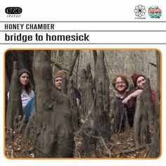 this is the cover to Honey Chamber's first album (Bridge to Homesick)
