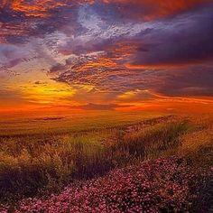 #Repost @capochino67 #sunset #wisconsin ... by Phil Koch. #amazing #Awesome #awesomeness #awesomenow #nature #cloudporn #clouds #Super #sunrise_sunset_worldwide #supersunset #viewmysunset #sunsets_oftheworld #thebest_sunset #sunset_madness