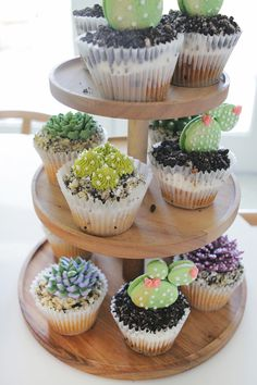 Succulent cupcakes, love it! Palm Springs Theme Baby Shower via A Beautiful Mess