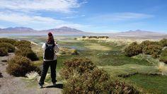 Blog Encantes : Salar de Tara – Em meio à aridez do deserto, a bel...