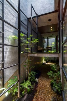 Black Framed Windows and Multi-Height Floors of Nara House by Fuji Architects Architecture Courtyard, Japan Architecture, Courtyard Design, Tropical Architecture, Interior Architecture, Design Industrial, Suburban House, Outdoor Balcony, Narrow House