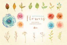 Watercolor Flowers Pack by OctopusArtis on Creative Market