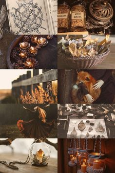 Autumn witch moodboard