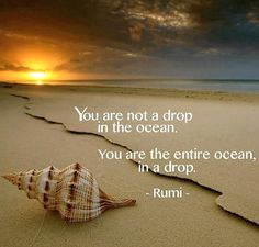 You are not a drop in the #ocean. You are the entire ocean, in a drop.
