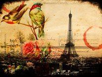 Vintage Paris Birds mural